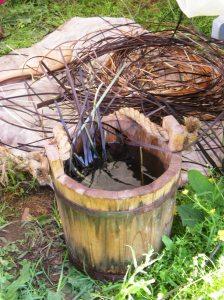Cherokee Basket Reeds dye