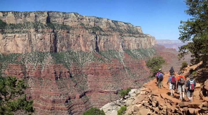 Grand Canyon National Park: Ranger Guided Hike To Cedar Ridge -